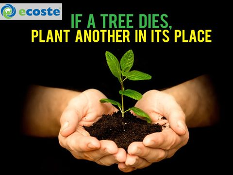 Plant Hope...Plant a #Tree