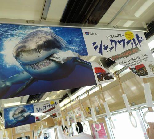 《日本創意車廂廣告》海報中的鯊魚竟然撕破了海報!?