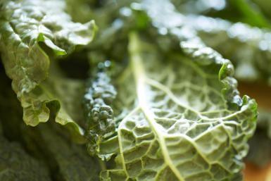 Crispy Kale Recipe