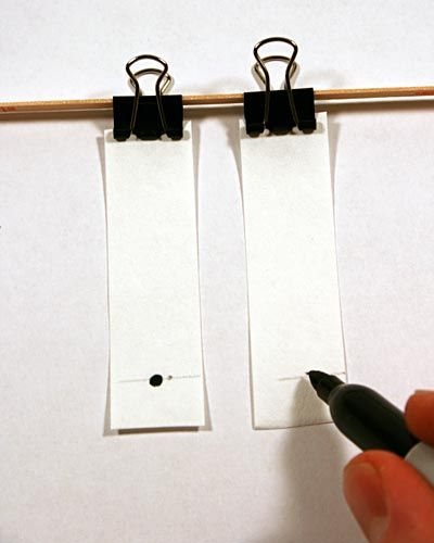 black ink spotted on paper chromatography strips for analysis Food Science Cooking science project