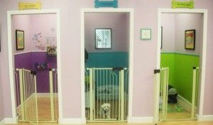 Cute idea for grooming salon instead of using kennels or crates