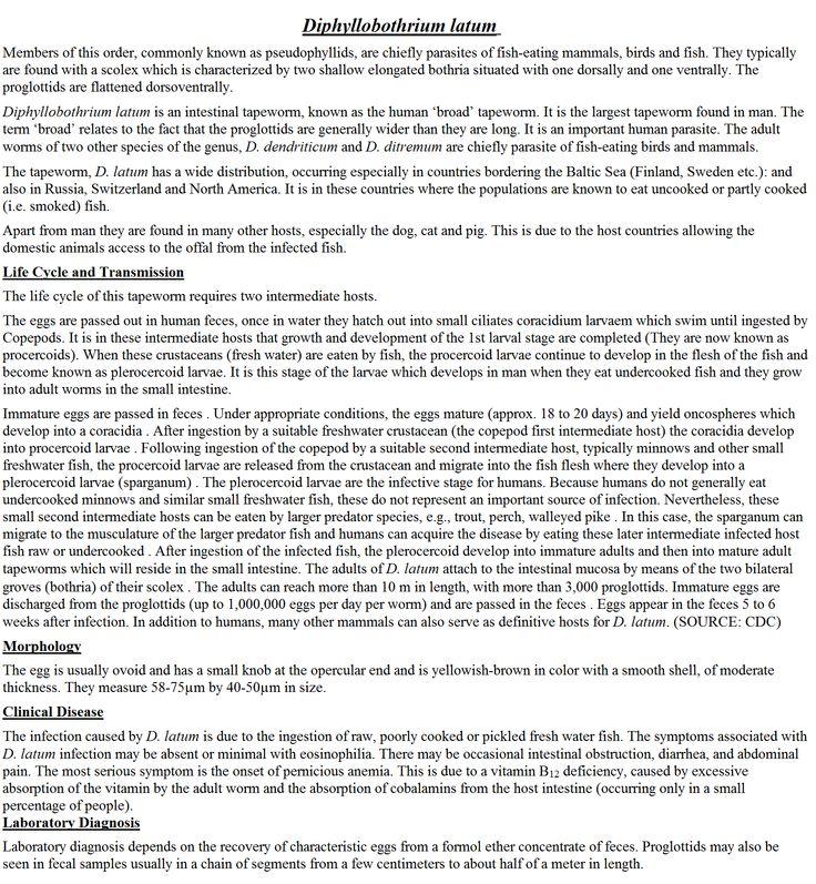 Diphyllobothrium Latum (Intestinal Cestode) -Helminth
