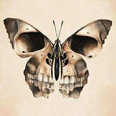 Картинки по запросу бабочка мертвая голова тату