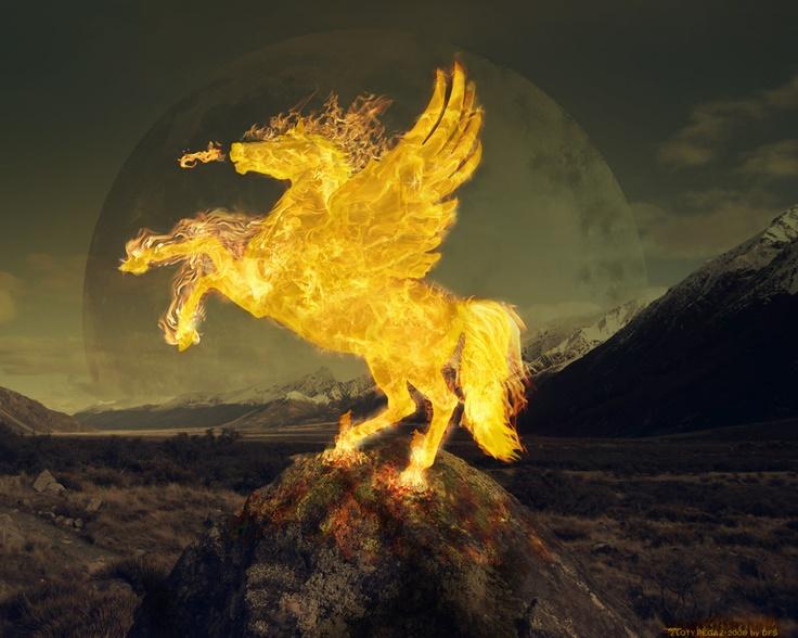 Flame pegasus
