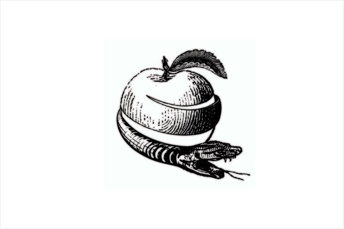 Sane-and-able-snake-apple.gif (694×462)