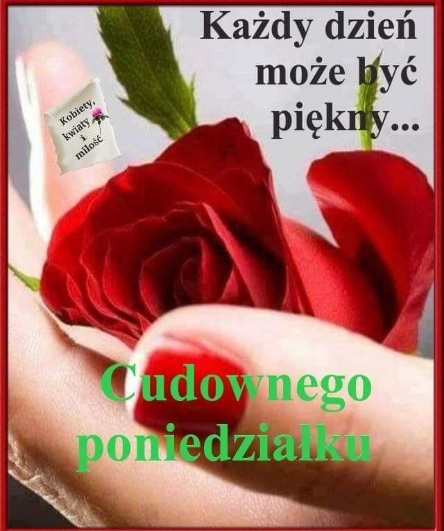 Pin By Teresaremus On Poniedzialek