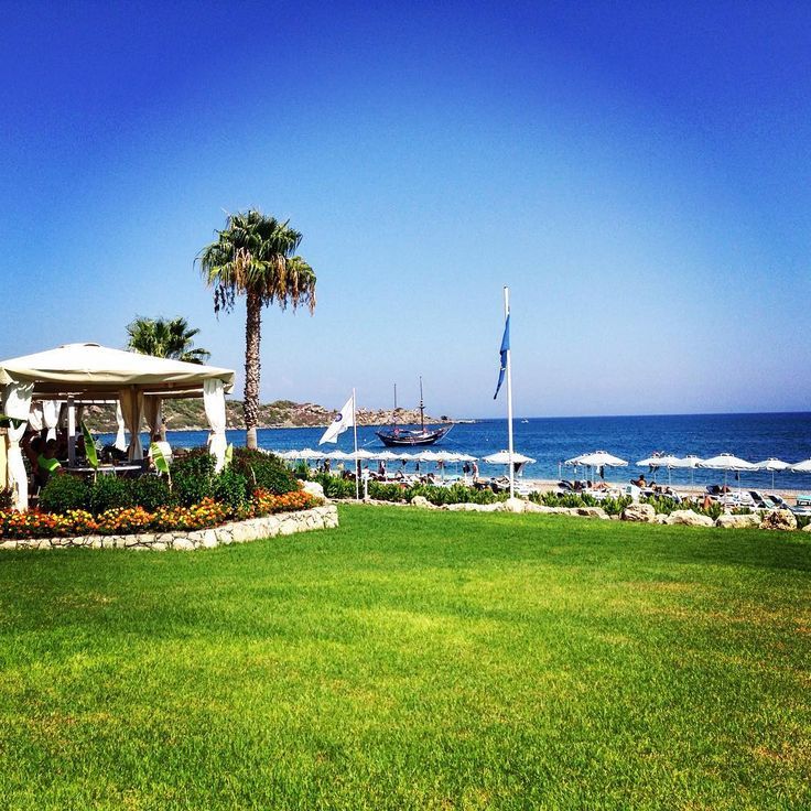 Who said #october is not #summer ? #stillsummer #octobersun #blue #sea #beach #palmtrees #beachbar #beachlife #instagood #vacation #summer2016 #greece #rhodes #island #rodospalladium