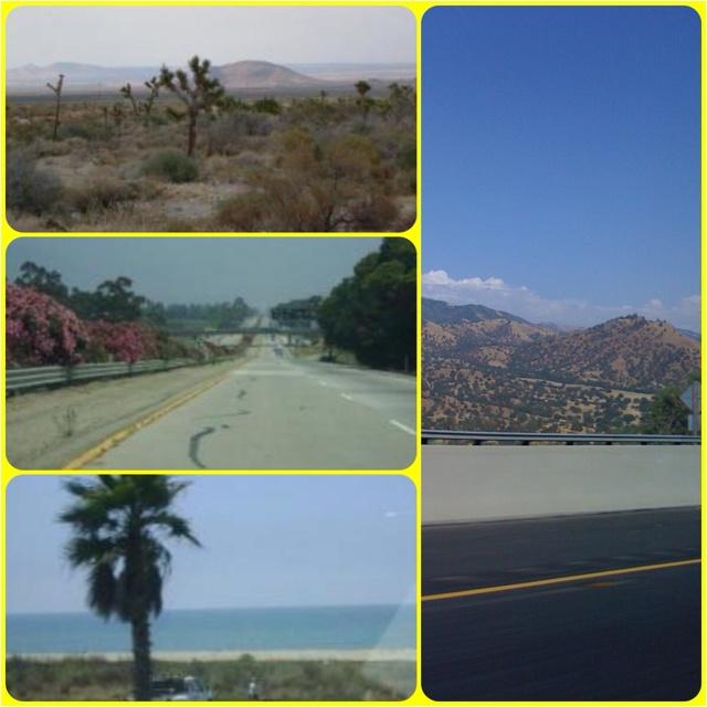 I love to visit Palmdale