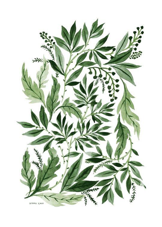 Green Leaves by Vikki Chu More