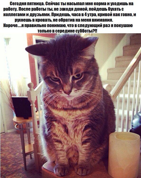 Александра Sahsa   УОЛ
