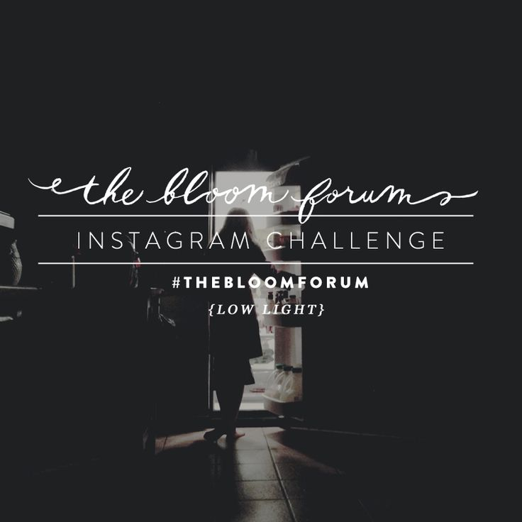 Bloom's Insta-Challenge round 10 || Low Light http://www.everythingbloom.com/blooms-insta-challenge-round-10