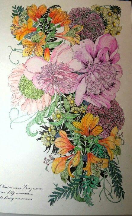 floribunda coloring book colored by me