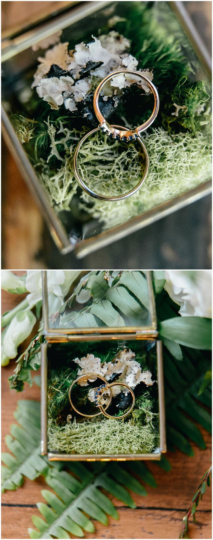 Ring box, moss, silver wedding bands, blue diamonds, engagement ring // Emily Wren Photography