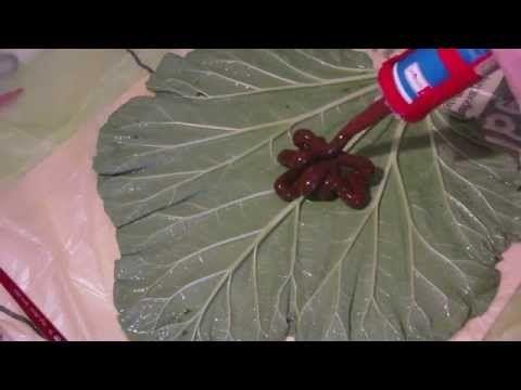 Beton giessen - DIY - Silikonform von einem Rhabarber Blatt - Negativform - YouTube