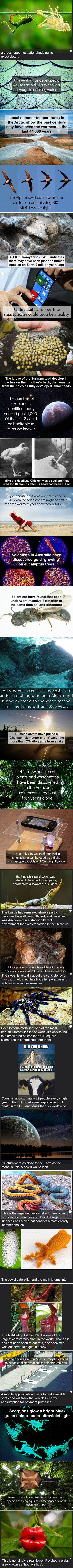 Here are some fun and fascinating science facts that might surprise you