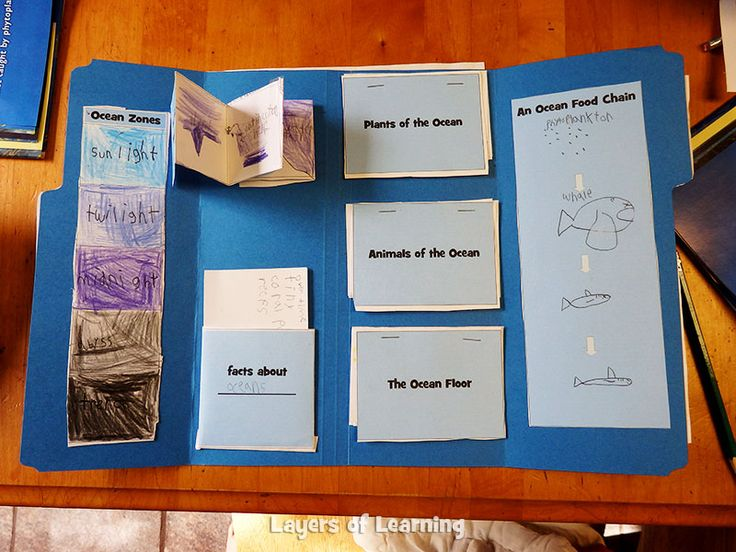 Ocean lapbook printables - free.  Tons of free educational printables on this site!