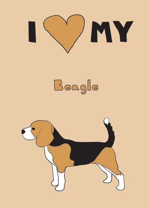 I love my beagle!