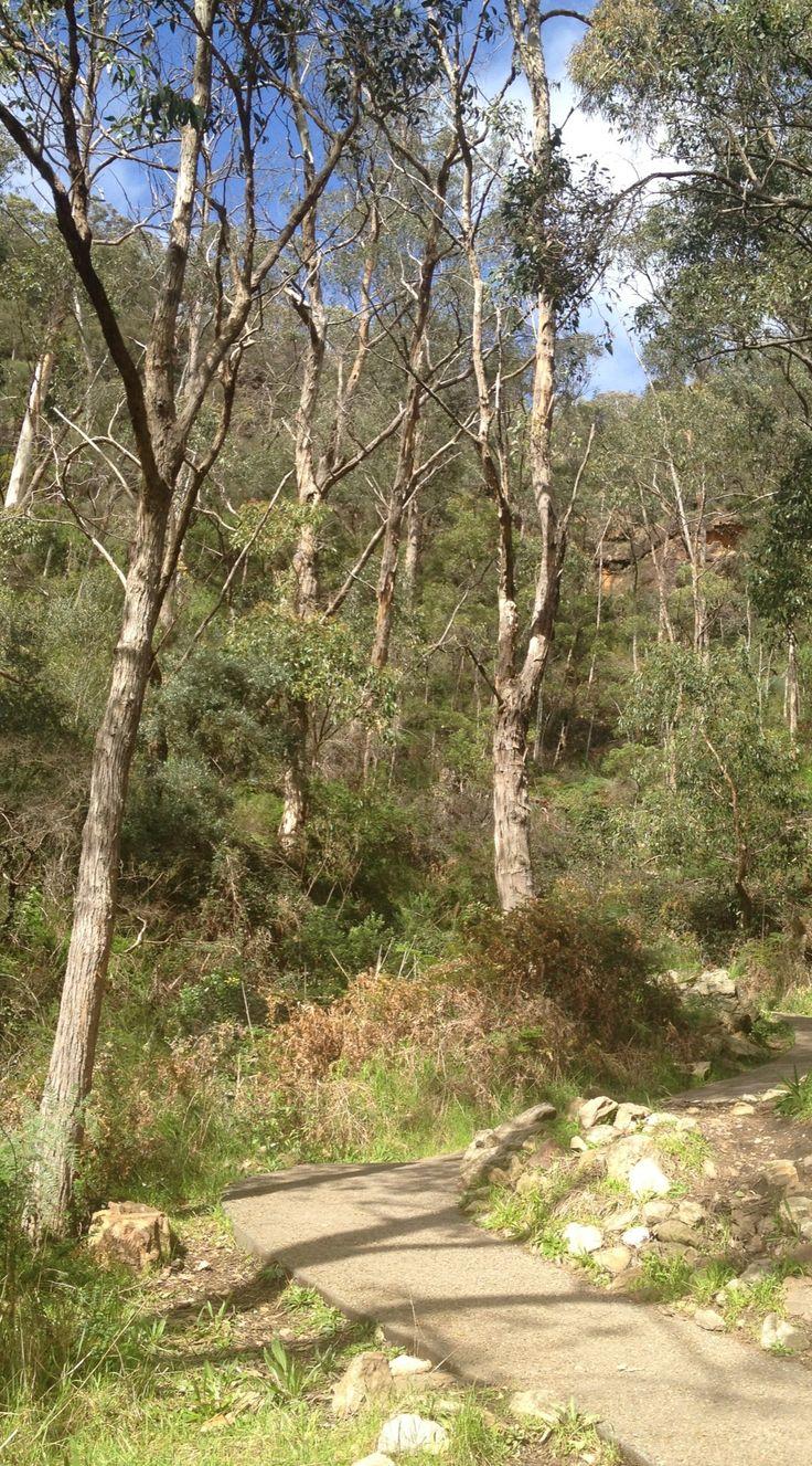 my mt lofty walk pics by riawati