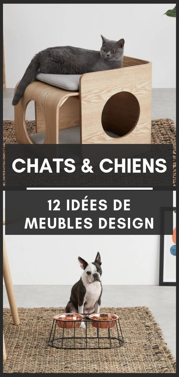 12 Idees De Meubles Design Pour Chats Chiens Made Com Mobilier De Salon Bebe Chat Et Meuble Design