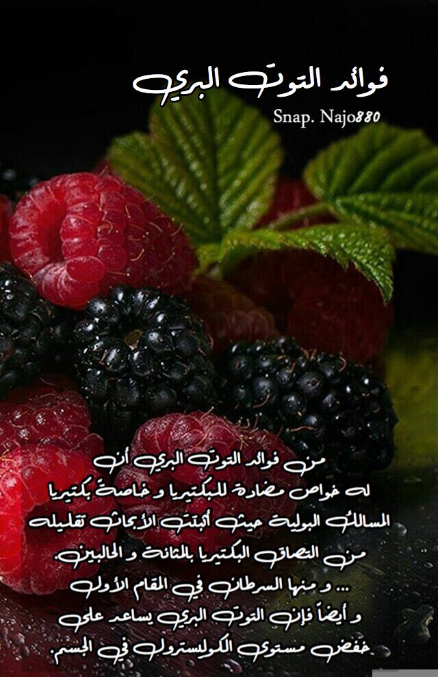 Pin By Najo880 On فوائد Food Fruit Blackberry