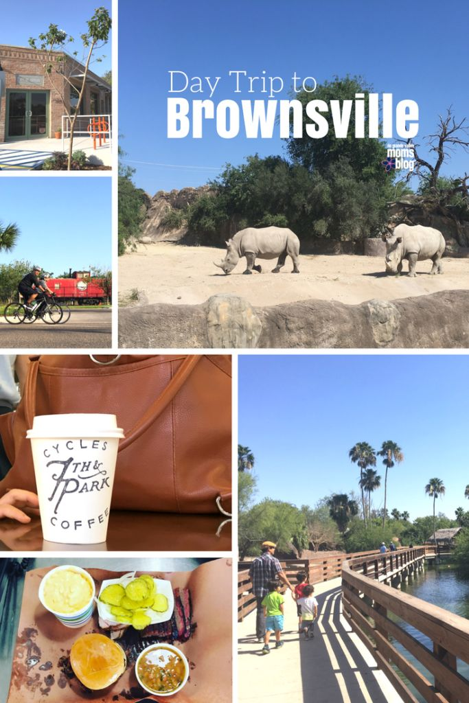 Day Trip to Brownsville Texas RGV with the Family - Things to do with Kids in the Rio Grande Valley Texas, Gladys Porter Zoo, Coffee, Bicycles, Barbecue BBQ, 7th and Park, 1848, Children's Museum,