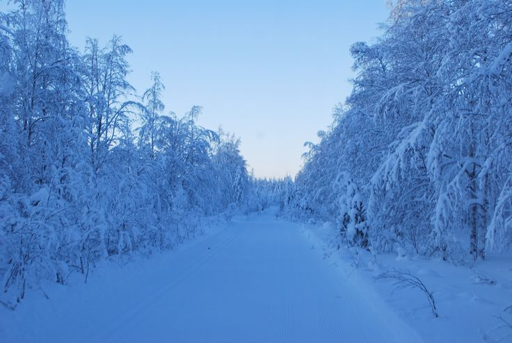 Cross-country skiing in Finland, Syöte