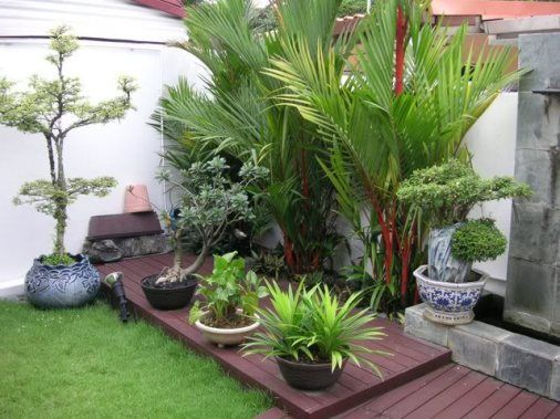 Quintal pequeno. Um deck de madeira sobre o gramado dá unidade aos diversos tipos de vasos e plantas.