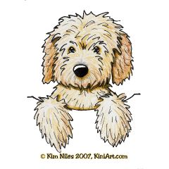 Pocket Goldendoodle KiniArt