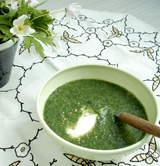 Plocka nässlor och koka soppa