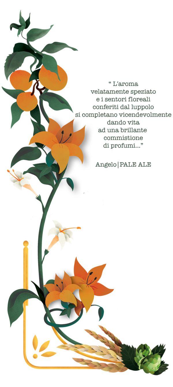 Selezione Angelo. Birrificio Angelo Poretti by Stefano Cattaneo, via Behance
