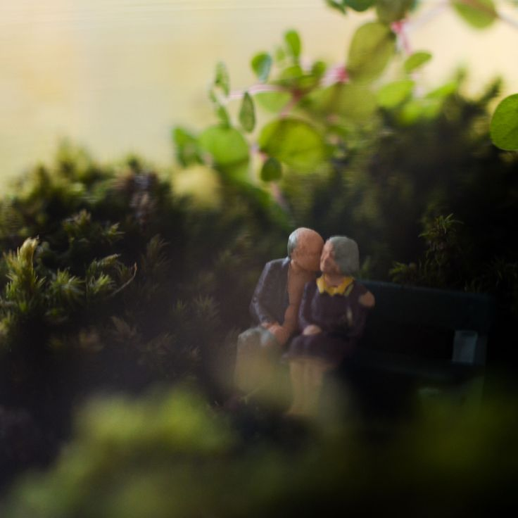 Tiny terrarium lovers, inside a labware terrarium created by Bramble Thicket.