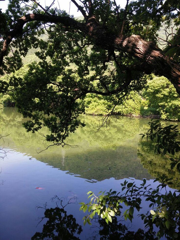 진해 환경생태공원