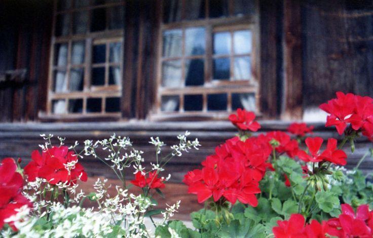 Emmentaler © Lomoherz #Schweiz #Switzerland