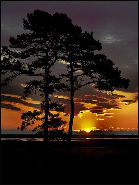Sunset , New Jersey, por Canpbell Joe.    amazing sunset!
