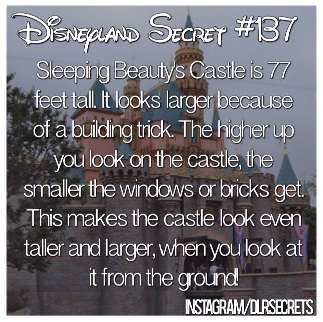 Disneyland secrets and tips