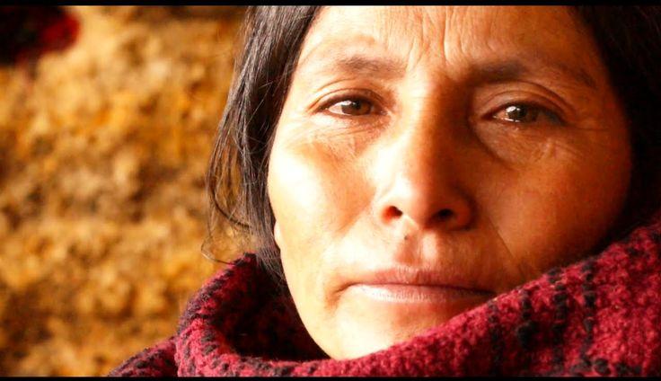http://www.hitandrun.gr/83790-2/ Κατά τη διάρκεια των δύο τελευταίων δεκαετιών, το Περού έχει υπερασπιστεί την εξορυκτική βιομηχανία, αγνοώντας τις φτωχές αγροτικές κοινότητες που τώρα παλεύουν με μολυσμένες πηγές νερού και την απώλεια της οικογενειακής τους γης. Το 2011 η Maxima Acuña αποφάσισε ότι «ως εδώ». Η 47χρονη γιαγιά, δεν ξέρει να διαβάσει ή να γράψει, αλλά τα τελευταία πέντε χρόνια, έχει μόνη της σταματήσει μια τεράστια επιχείρηση εξόρυξης που απειλεί αυτόχθονες κοινότητες σε όλη…