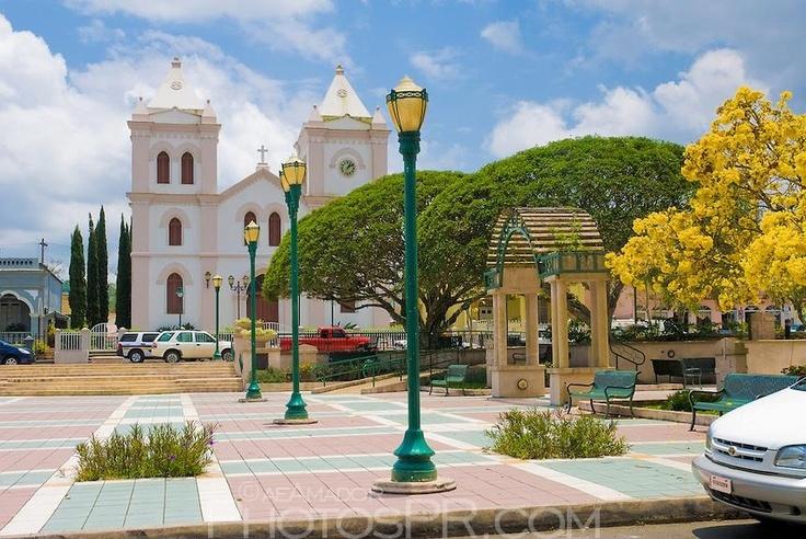 22 best aibonito mi pueblo images on pinterest puerto for Armadi california porto rico
