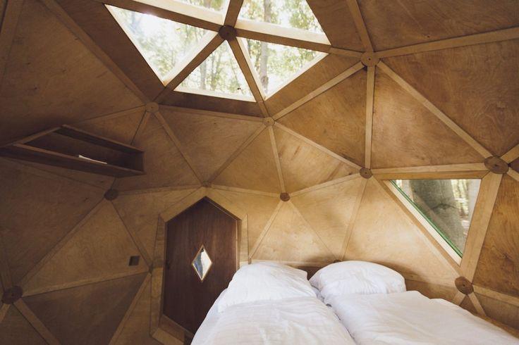 Hotel en el medio de un bosque redefine el concepto de escaparse a la naturaleza | Notas | La Bioguía