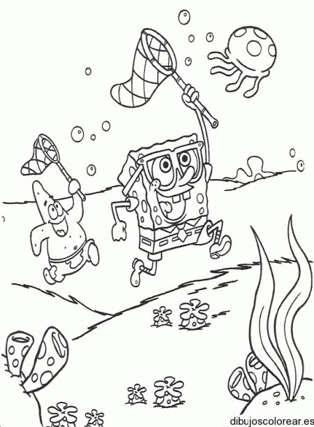 Ms de 25 ideas increbles sobre Dibujos de bob esponja en