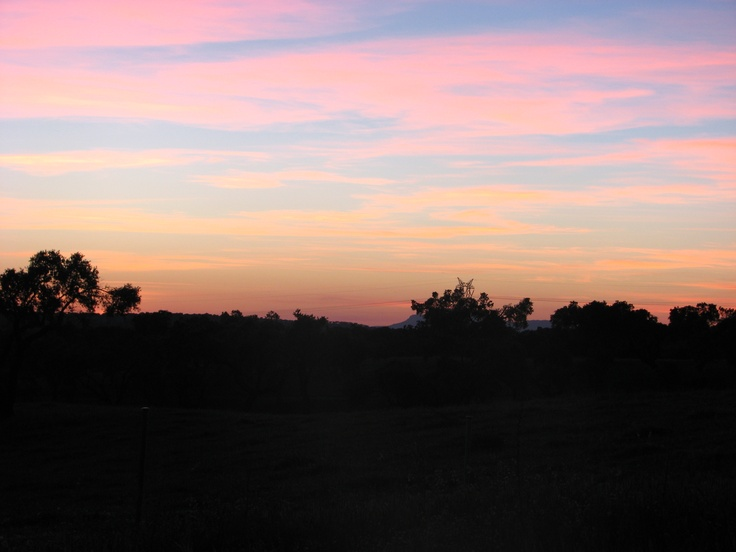 Atardecer en la dehesa de Monroy, junto al Parque Nacional de Monfragüe. Un deleite para los sentidos.