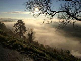 A misty Torrington Common