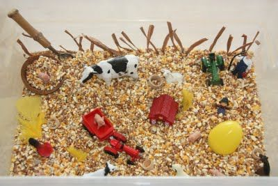 FARM :Here's what's inside: :: Feed -various seeds and corn kernels. :: Feathers :: Raffia :: Farm figurines :: Wooden cups and little wooden bowls :: A sugar spoon shaped like a garden spade :: Mini John Deere tractor :: Plastic egg (leftover from Easter) :)