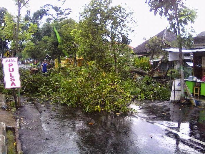 Hujan Disertai Angin Kencang Di Kertosono Nganjuk | Mochamad Cholil Hamzah