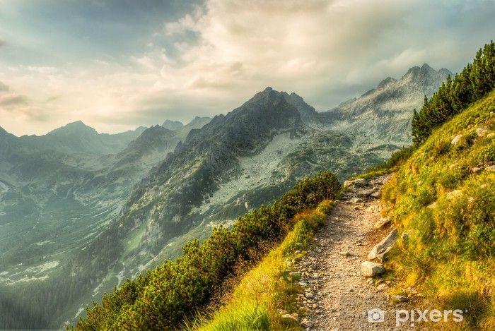 Papier peint Sentier de montagne • Pixers® - Nous vivons pour changer | Papier peint, Sentiers ...