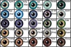 Varying eye colours chart, (as used for The Sims characters).