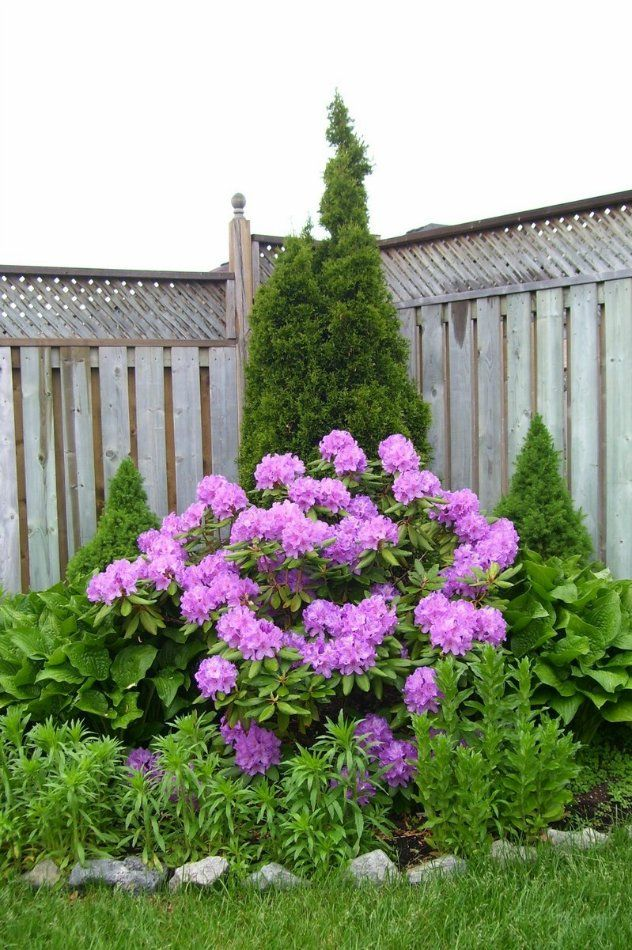 181 best Corner lot landscaping ideas images on Pinterest ...
