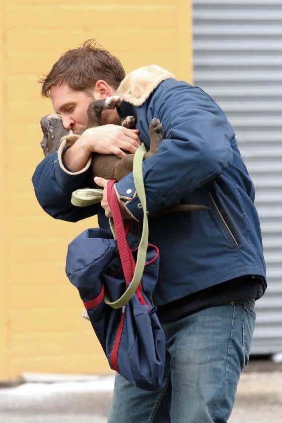 tom hardy and a puppy. seriously.