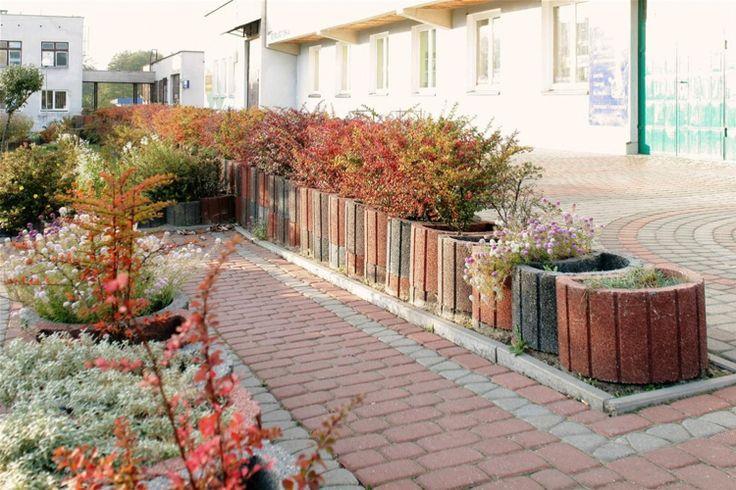 pflanzsteine-setzen-bepflanzen-rund-pflanzringe-struktur-mauer-strauch-berberitze