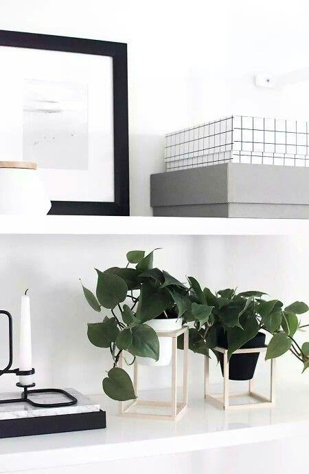 DIY planter stands