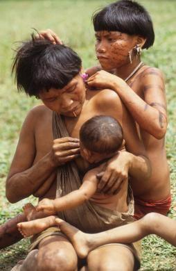 Indios Pemones